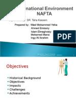 Intr Inv NAFTA Missiry