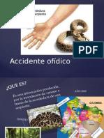 Accidente Ofídico(1)