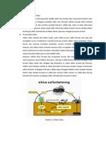 Siklus Sulfur Karbon
