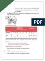 Deklination.pdf