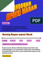 EKSPRESI MARAH