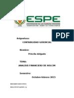 4 Informe Ejecutivo Holcim 1
