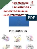 Lactancia Materna, Técnica de Lactancia y
