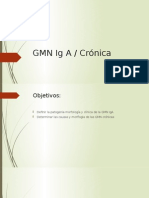 GMN Ig A y Cronicas