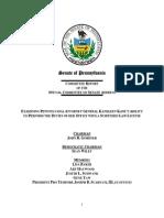 Senate special committee report