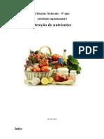 Relatorio de deteçao de nutrientes