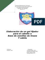 Trabajo de Investigacion Gelatina 5to c