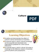 Ch02 Culture