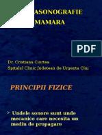 2010_Ecografia mamara