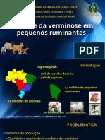 Controle da Verminose em Pequenos Ruminantes