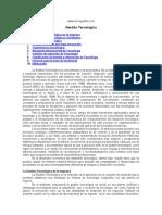 gestion-tecnologica INFO