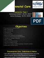 1. Antenatal Care - Team 1