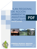 Plan de Accion Ambiental Amazonas (1)