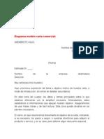 Esquema Modelo Carta Comercial