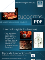 Leucocitos Listo (1)
