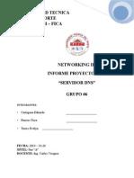 Informe Final DNS