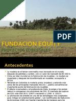 Presentacion Proy. Forestal - Vichada