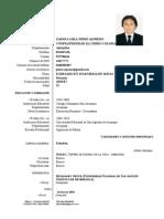 Curriculum Piero 2013