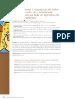 Agricultura _Um novo olhar 3