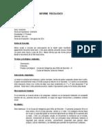 Informe Vineland (2)