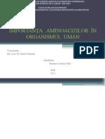 Importanta AA in Organismul Uman
