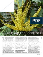 Clarifying the Identities of Two Nepalese Mahonia