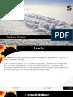 Fractales- Organizaciones fractales