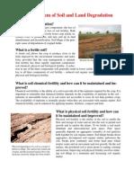 leaflet_degradation (1) (1).pdf