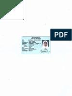 DPN KTP Merged