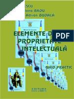 Elemente de proprietate intelectuala.pdf