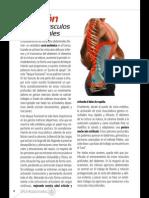 GranLibro.abdominales.sportlife179 Marzo2014 Página 08