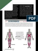 GranLibro.abdominales.sportlife179 Marzo2014 Página 10