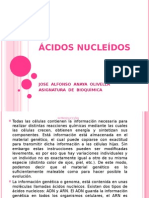 acidos nuceicos