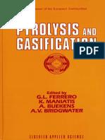 Pyrolisis and Gasification