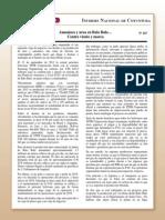 Coy 167 - Amoniaco y urea en Bulo Bulo... contra viento y marea.pdf