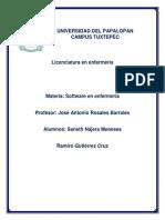Manual de Instalación de Plm Guias de Salud