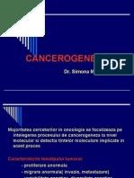 Cancerogeneza