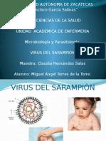 Virus Del Sarampion