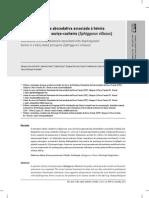 Broncopneumonia abscedativa associada à hérnia diafragmática em ouriço-cacheiro (Sphiggurus villosus)