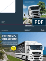 TGX_EfficientLine__de_.pdf
