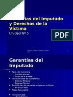 Garantias Del Imputado