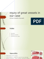 Injury of Great Vessels in Our Case