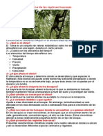 Características del clima de las regiones boscosas.docx