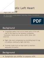 hypoplastic left heart syndrome - group project