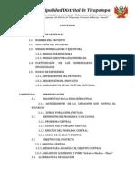 ESTUDIO DE PRE INVERSION A NIVEL PERFIL TICAPAMPA PAVIMENTADO.pdf