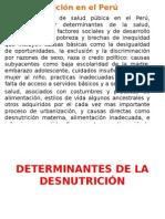 Determinantes de La Desnutrición