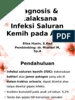 Infeksi Saluran Kemih (ISK) pada Anak