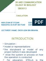 Stella Simulation slides