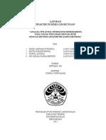 Laporan Kimia Lingkungan TPH