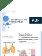PPT Seminario Enfermedades Adrenales